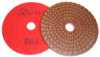 5-Step Monster Diamond Polishing Pads POS 2